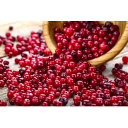 Dr. Light Fruit CRANBERRY - RASPBERRY (30g) PRE + PROBIOTICS PHARMIND