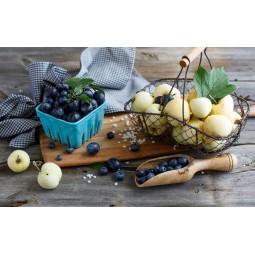 Dr. Light Fruit VISIO - BAR (30g) PRE + PROBIOTICS PHARMIND